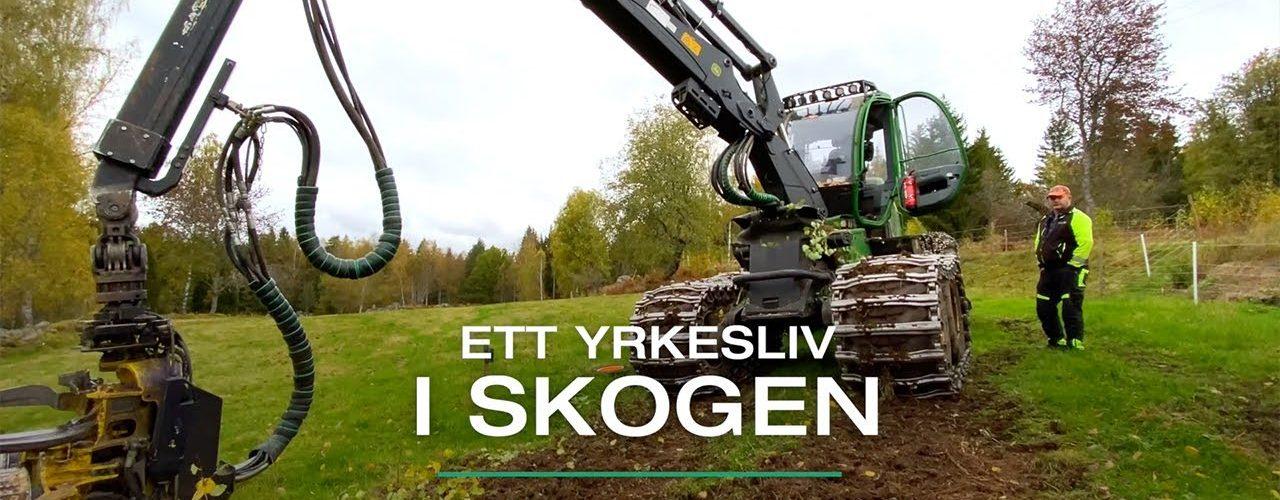 Ett yrkesliv i skogen - Ydre, Östergötland