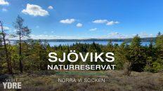 Sjöviks Naturreservat, Norra Vi Socken, Ydre, Östergötland | VISIT YDRE